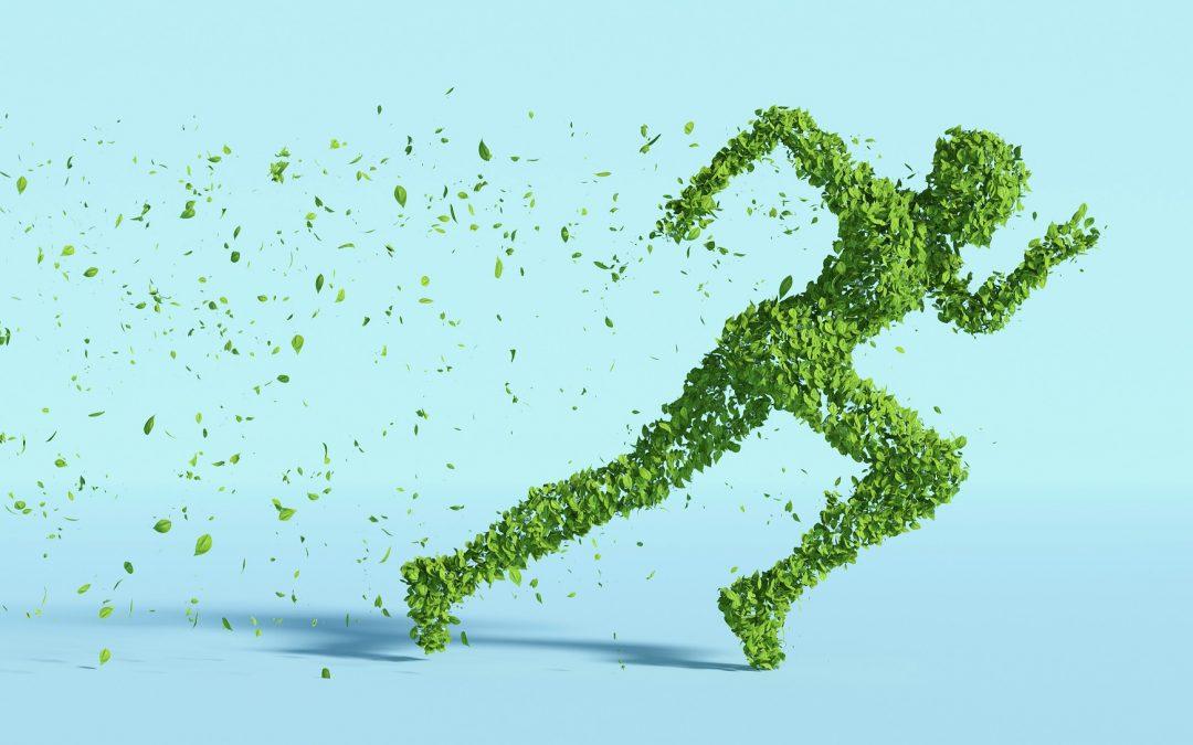 Energie-efficiëntie & duurzaamheid in sportfaciliteiten (webinars)