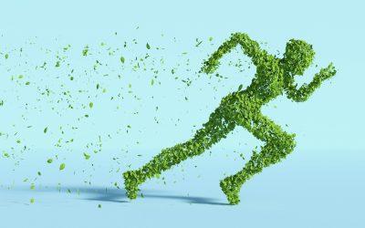 Energie-efficiëntie & duurzaamheid in sportevenementen & sporttoerisme (webinar)